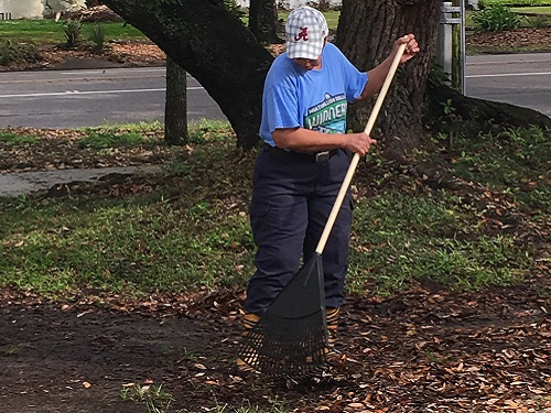 Raking Leaves From the Old Oak Tree